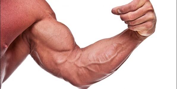 Mit diesen 3 Übungen die Unterarme effektiv trainieren | effektiv ...